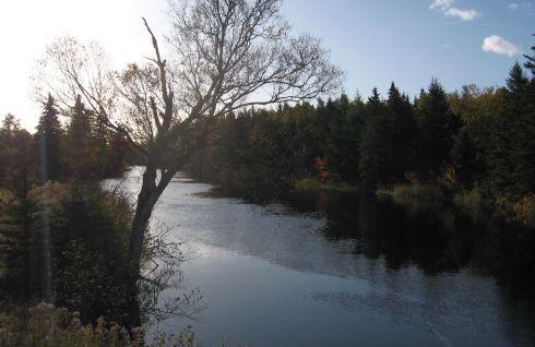 7 Mile Bridge - today's turnaround point