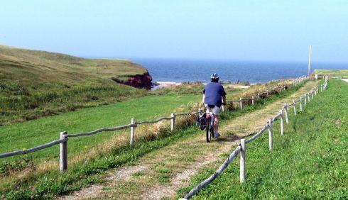 udo bike