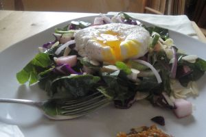 cranberry kale salad topped with poached egg